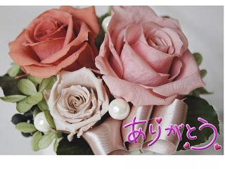 f0150881_12583267.jpg