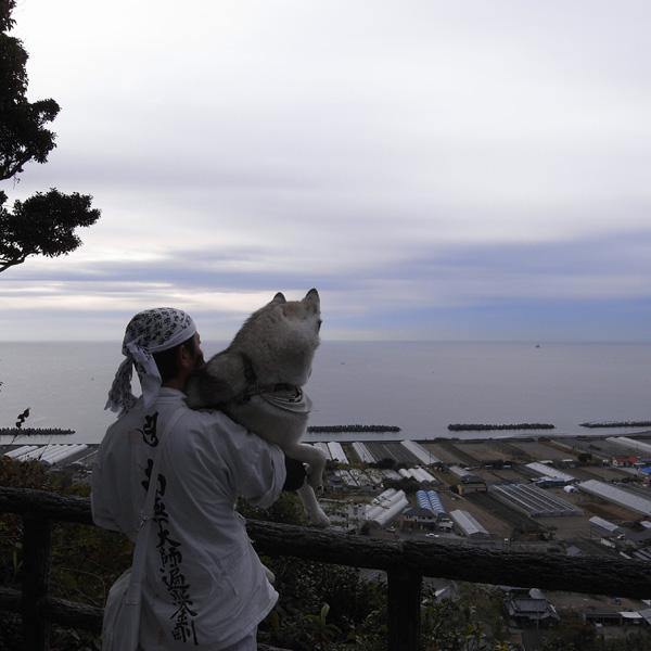 11月23日 おへんろ13日め by GX100_c0049299_14103213.jpg