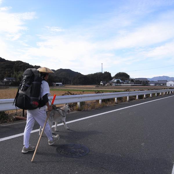 11月23日 おへんろ13日め by GX100_c0049299_14112734.jpg