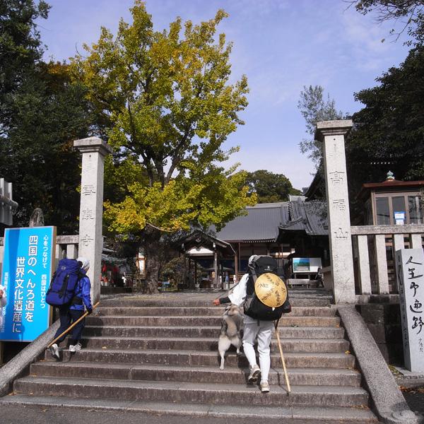 11月23日 おへんろ13日め by GX100_c0049299_1411735.jpg
