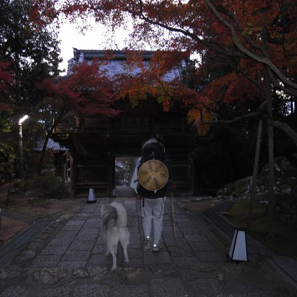 11月23日 おへんろ13日め by GX100_c0049299_1492427.jpg