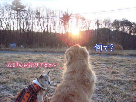 初日の出_f0064906_17112794.jpg