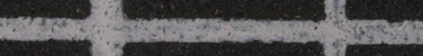 交織壁紋綸子(型紙捺染)_c0164709_10281828.jpg