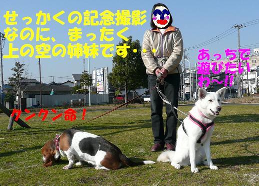 f0121712_074983.jpg