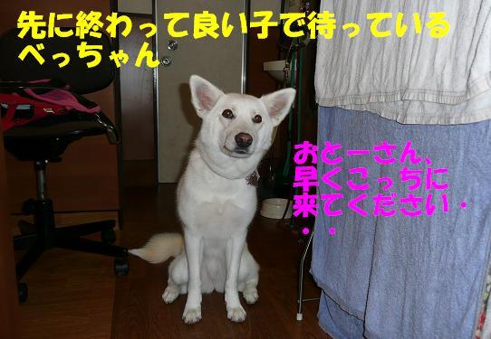 f0121712_083011.jpg