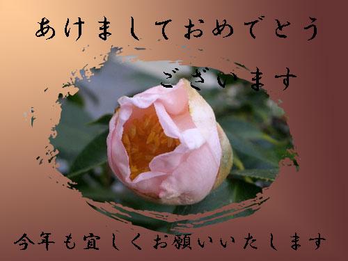 c0042418_9354616.jpg