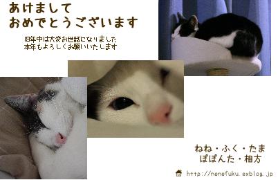 f0073833_23221349.jpg