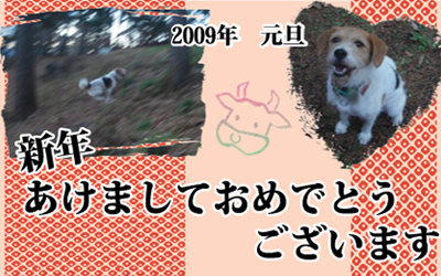 c0086746_21255062.jpg