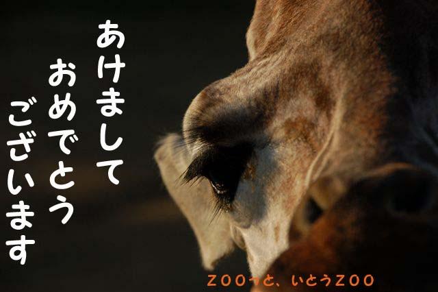 b0153451_274975.jpg