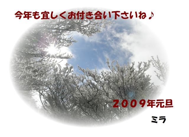 c0042869_023173.jpg