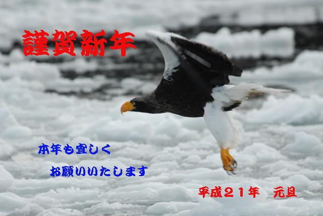c0036878_120886.jpg