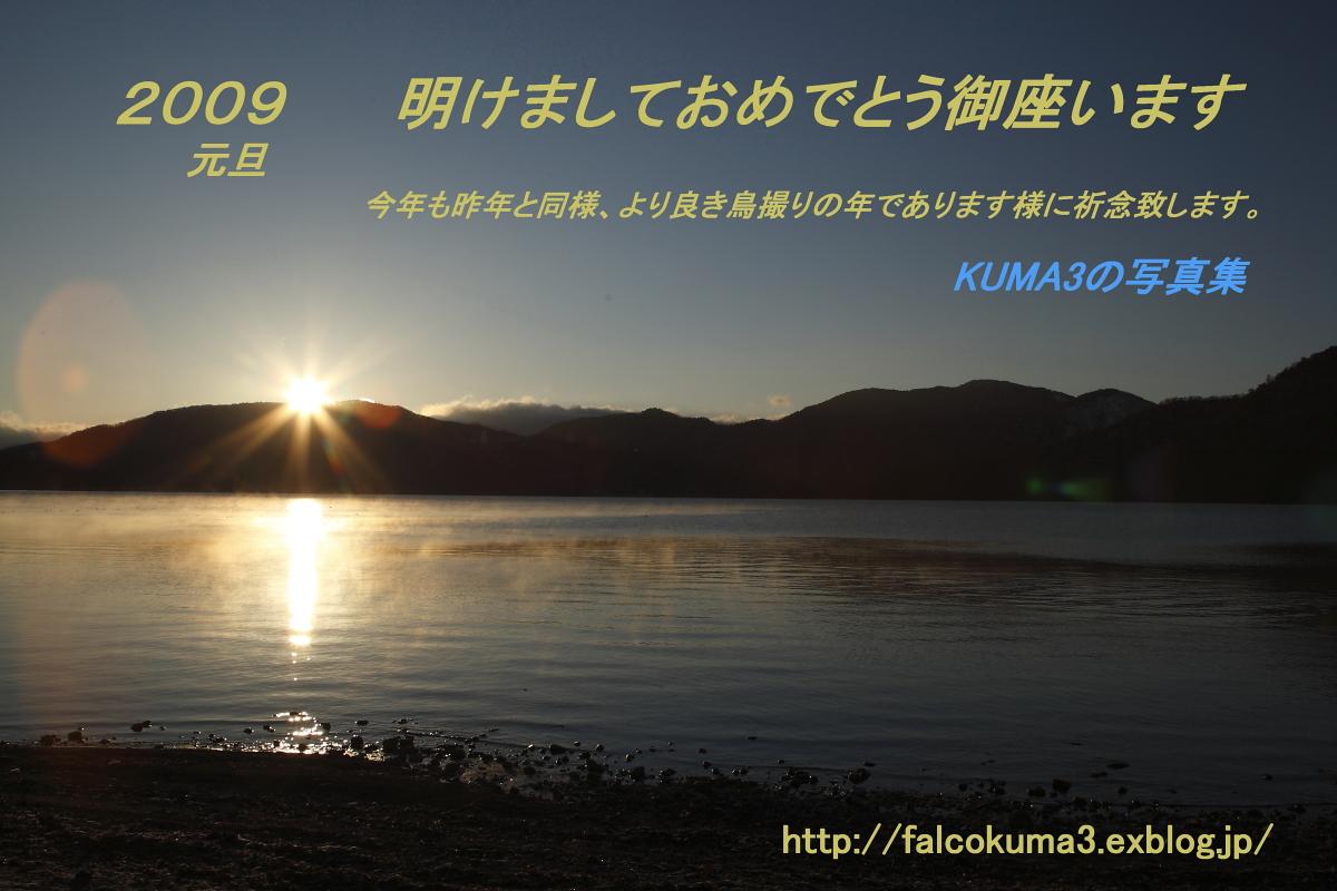 f0113782_2455116.jpg