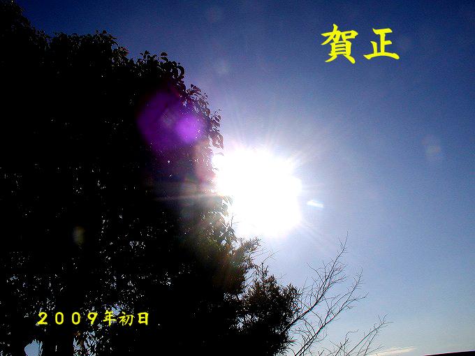 d0045383_10243622.jpg