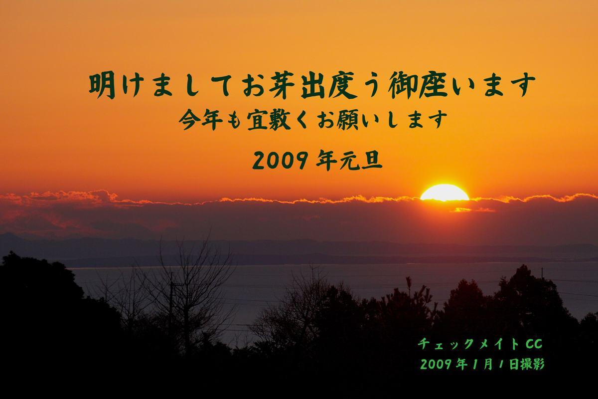 新年のご挨拶/初撮りハシビロガモ_b0024798_1462382.jpg
