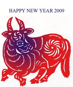 新年 おめでとう御座います_c0081499_7174029.jpg