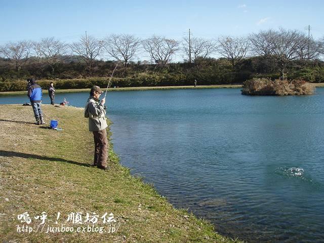 釣りおさめと、加賀戦プラ。_c0106128_23234443.jpg