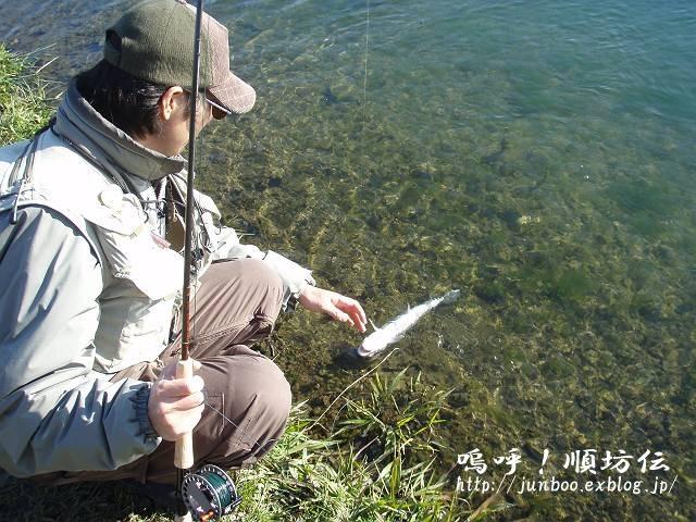 釣りおさめと、加賀戦プラ。_c0106128_23275020.jpg