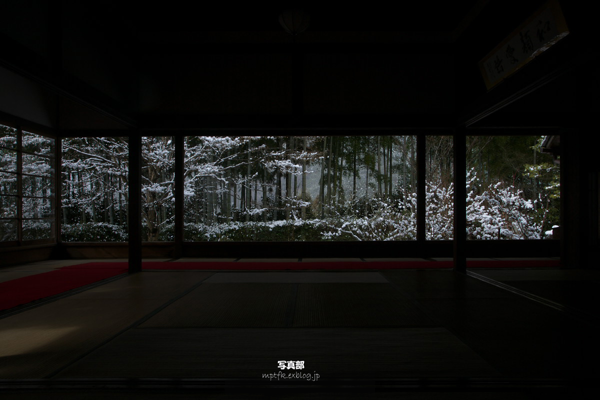 大原 宝泉院 雪景色_f0021869_084585.jpg