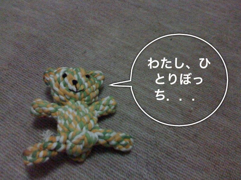 f0168374_16453611.jpg