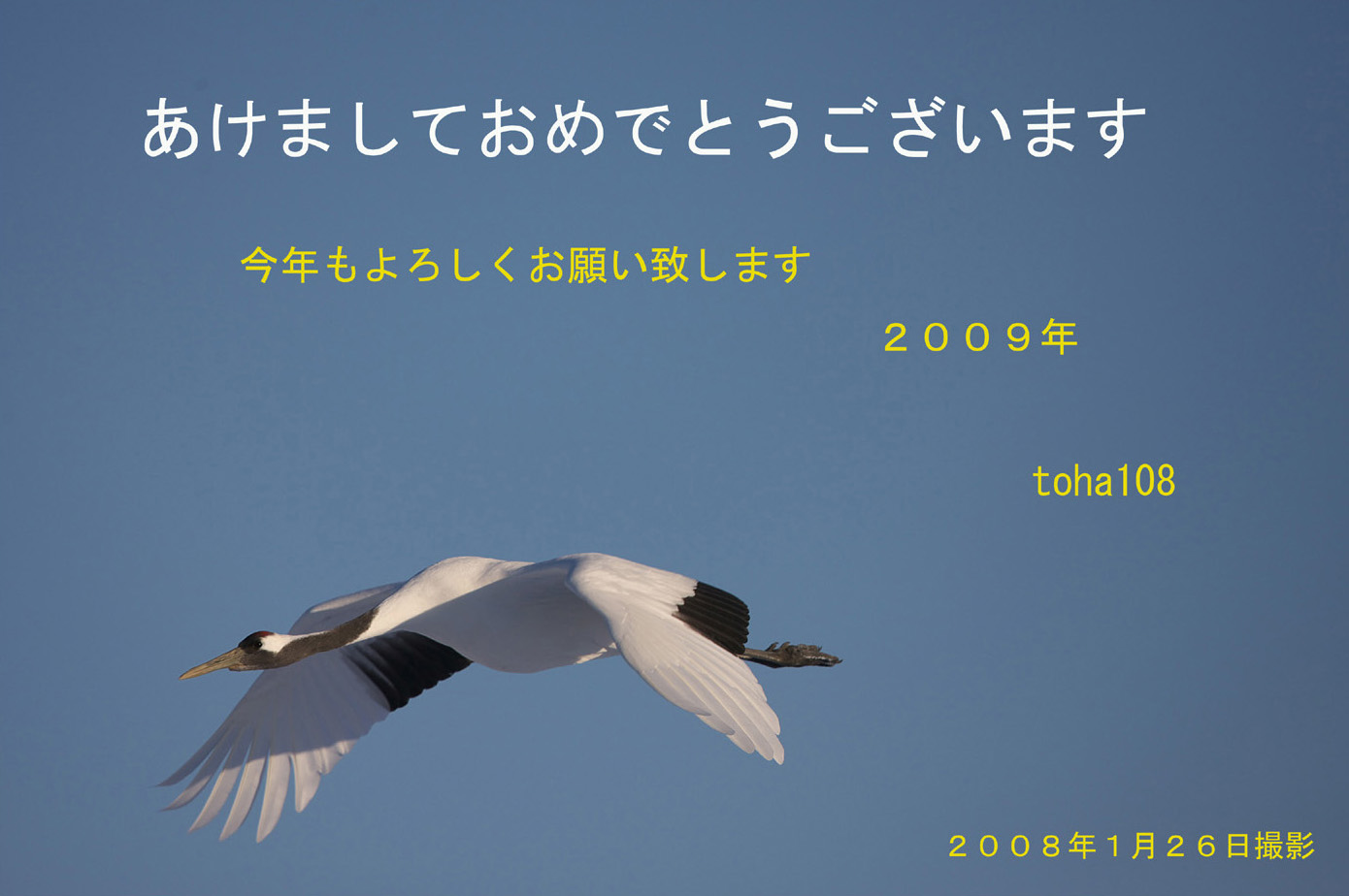 f0010298_135294.jpg
