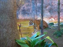オジサンズ in 動物園_a0036808_23535948.jpg