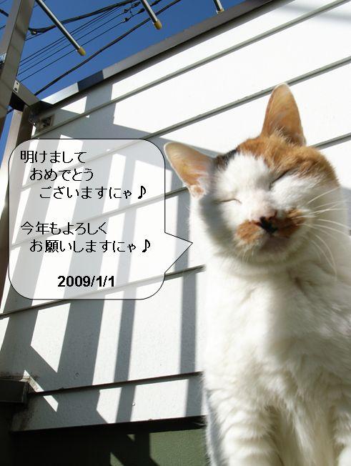 f0043912_20144134.jpg