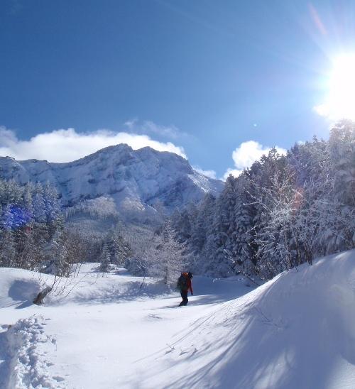 恒例正月登山1 南八ヶ岳-赤獄神社初詣_c0177814_13314610.jpg