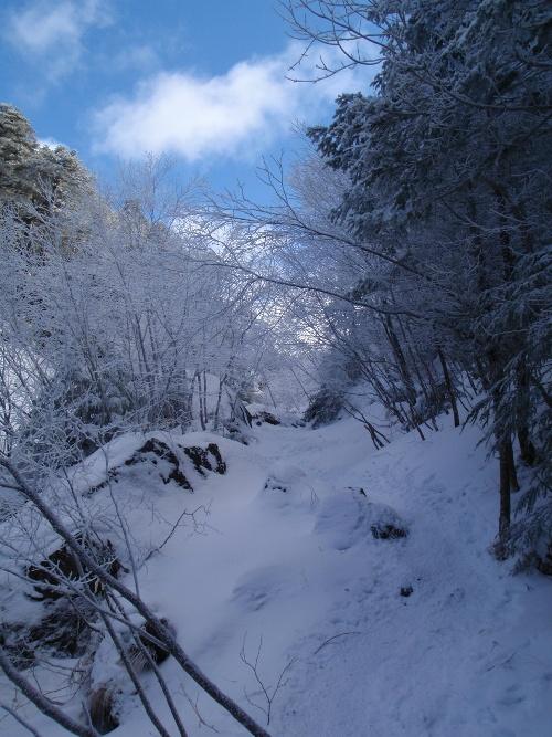 恒例正月登山1 南八ヶ岳-赤獄神社初詣_c0177814_1416364.jpg