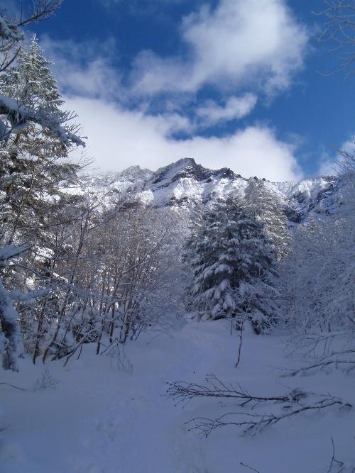 恒例正月登山1 南八ヶ岳-赤獄神社初詣_c0177814_14165211.jpg