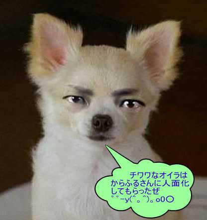 f0085330_16593187.jpg