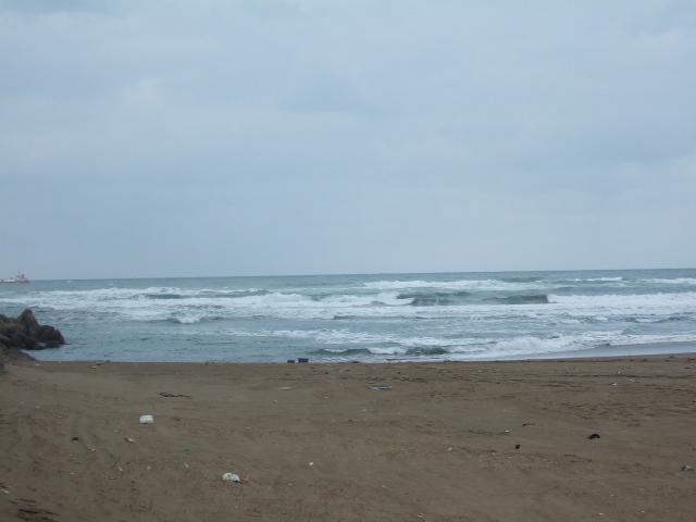 今日の海_c0132732_11374289.jpg