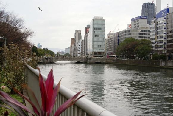 中之島・・・京阪線をおりると・・・ _f0186356_21283160.jpg