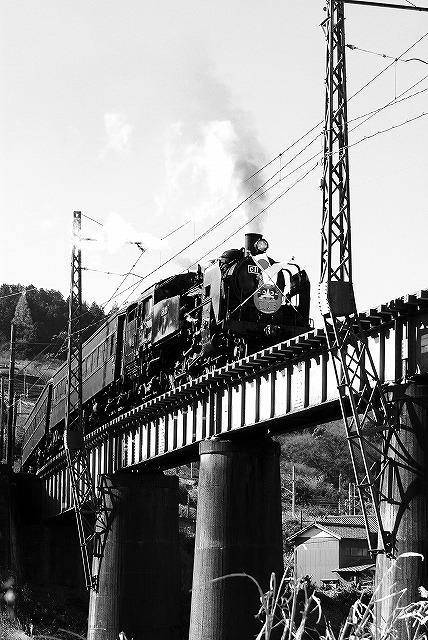 初撮り~大井川鉄道09.01.02~_c0173762_21184465.jpg