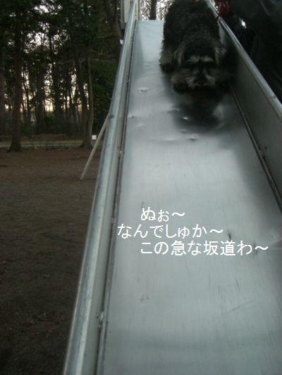 f0197317_814853.jpg