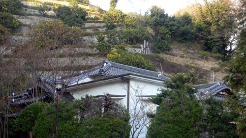 2009 お正月 屋根修理_f0060424_17431948.jpg
