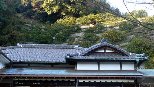 2009 お正月 屋根修理_f0060424_1743598.jpg