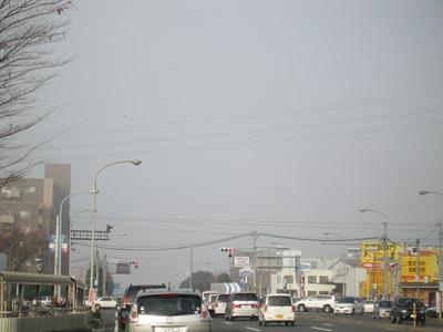 宮崎最終日_e0068732_23263668.jpg
