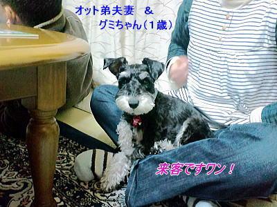 b0097848_1711577.jpg
