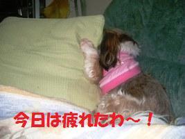 d0140668_10134525.jpg