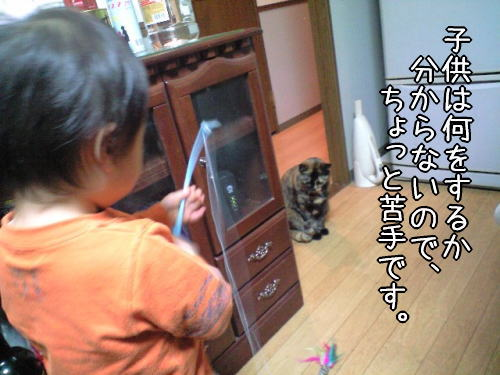 f0187974_20575221.jpg