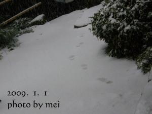 b0133123_226521.jpg