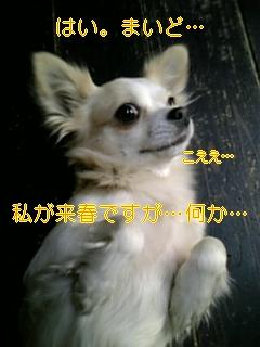 f0148927_15491491.jpg