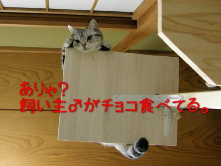 b0077929_1644225.jpg