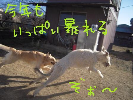 f0176830_1444799.jpg
