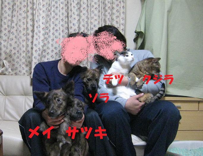 d0057536_18484073.jpg