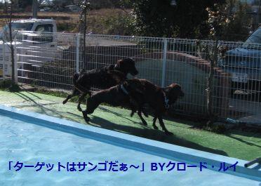 b0148945_121402.jpg