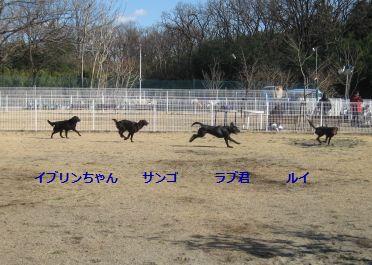 b0148945_1217182.jpg