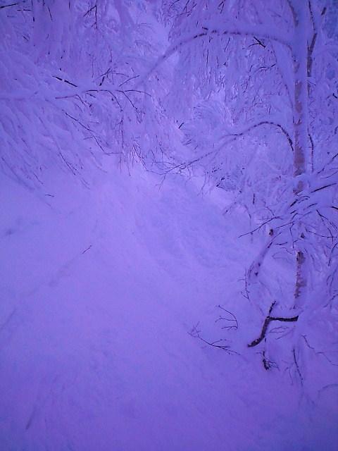 北海道 初滑り~@手稲ハイランド_c0151965_23163183.jpg