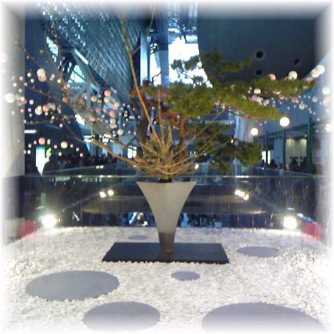 新年♪_e0142585_20428100.jpg