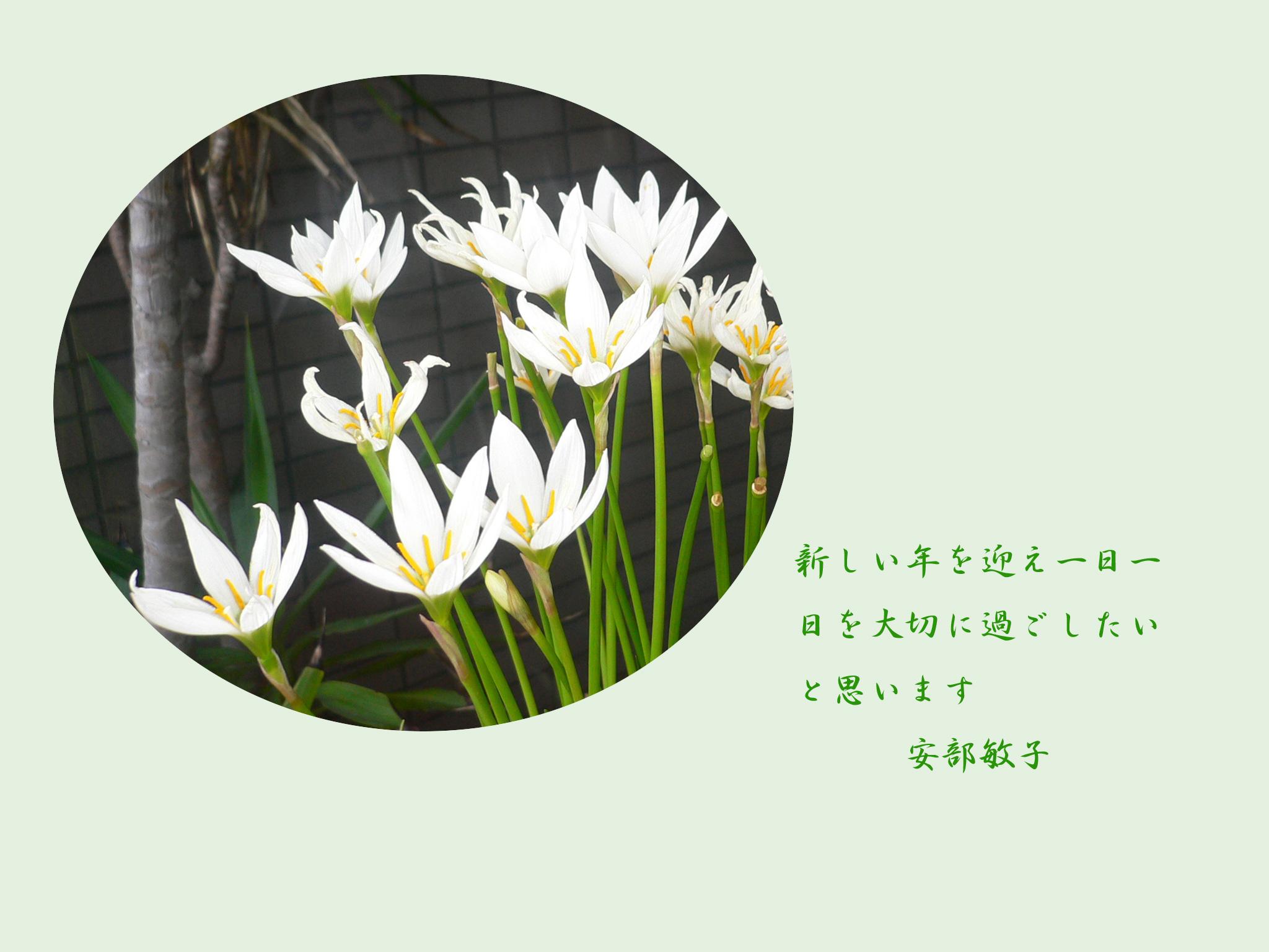 f0018904_13344077.jpg